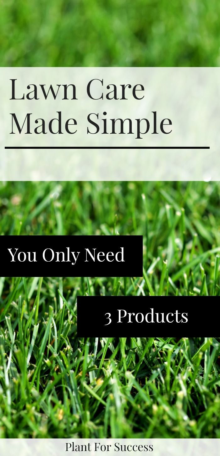 Lawn Care Schedule Using Only 3 Products In 2020 Lawn Care Schedule Organic Lawn Care Lawn Care