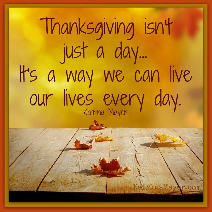 Thanksgiving isn't just a day... It's a way we can live our lives every day. Katrina Mayer