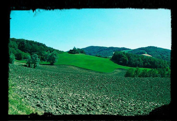 Bolognashire: campi arati e colline