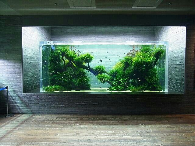 Ada aquarium by takashi amano skytree town tokyo for Ada fish tank