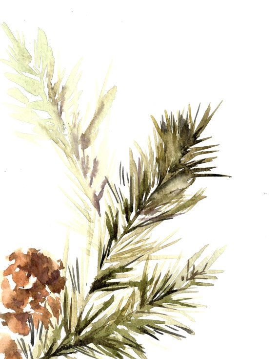 Pine Tree Branch with Pinecones Watercolor Painting Art Print Fine Art Print from Watercolor Painting Watercolour Modern Art High quality art