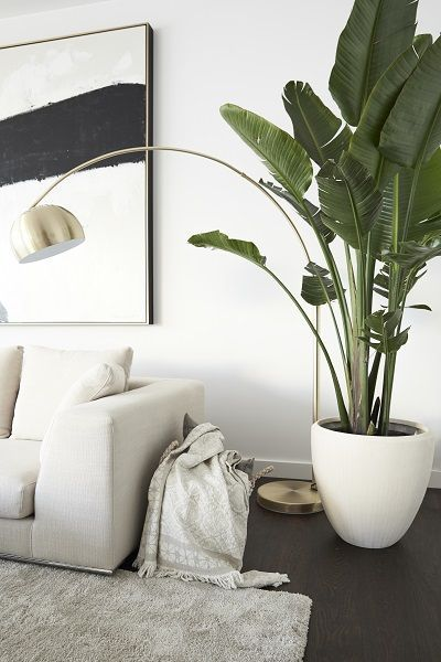 """Mandy Capristo's favorite place: the lounge area in the living room with modern art and Strelitzia tree, """"because I find the necessary leisure for my songs on the spacious couch or barefoot on the fluffy Shaggy rug."""" // Living room Sofa Planting Carpet Image Beige Setting up Mandy Capristo Ideas Decoration #Living Room #Living Room Ideas #Sofa #Plants #Rugs #Picture #Setting Up #MandyCapristo #Homestory"""