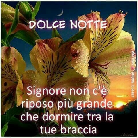 102 Best Images About Buona Notte On Pinterest Frase