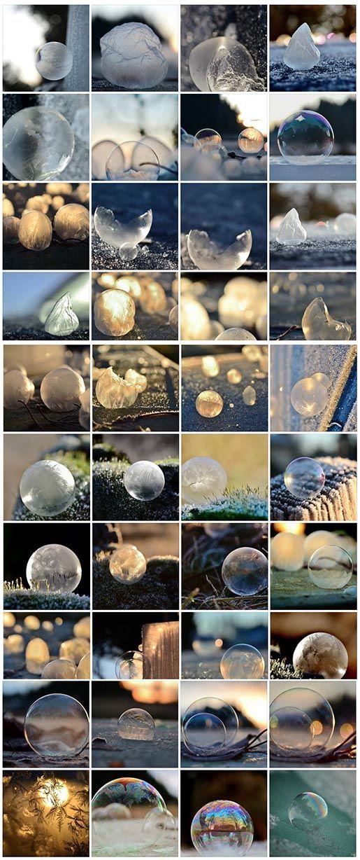 Frozen in a bubble - by Angela Kelly, USA