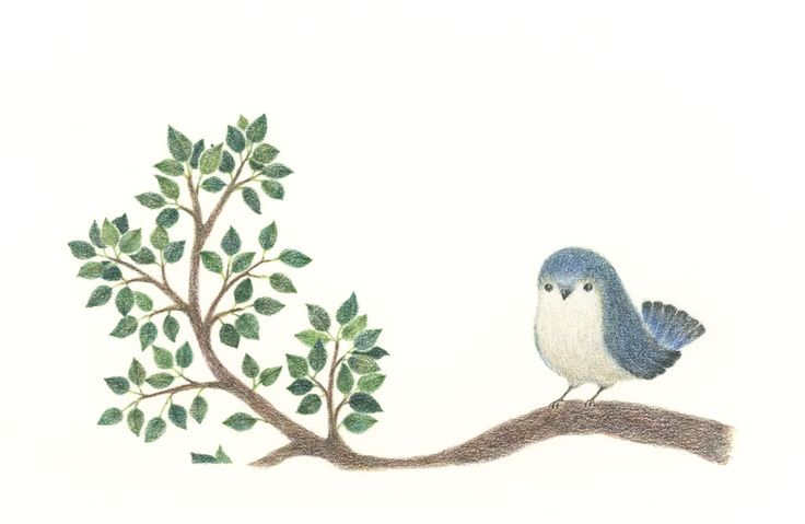 """Blue Bird on a Branch"" −RiLi, picture book, illustration, design ___ ""枝の上の青い小鳥"" −リリ, 絵本, イラスト, デザイン ...... #illustration #branch #bird #blue #イラスト #枝 #鳥 #青"