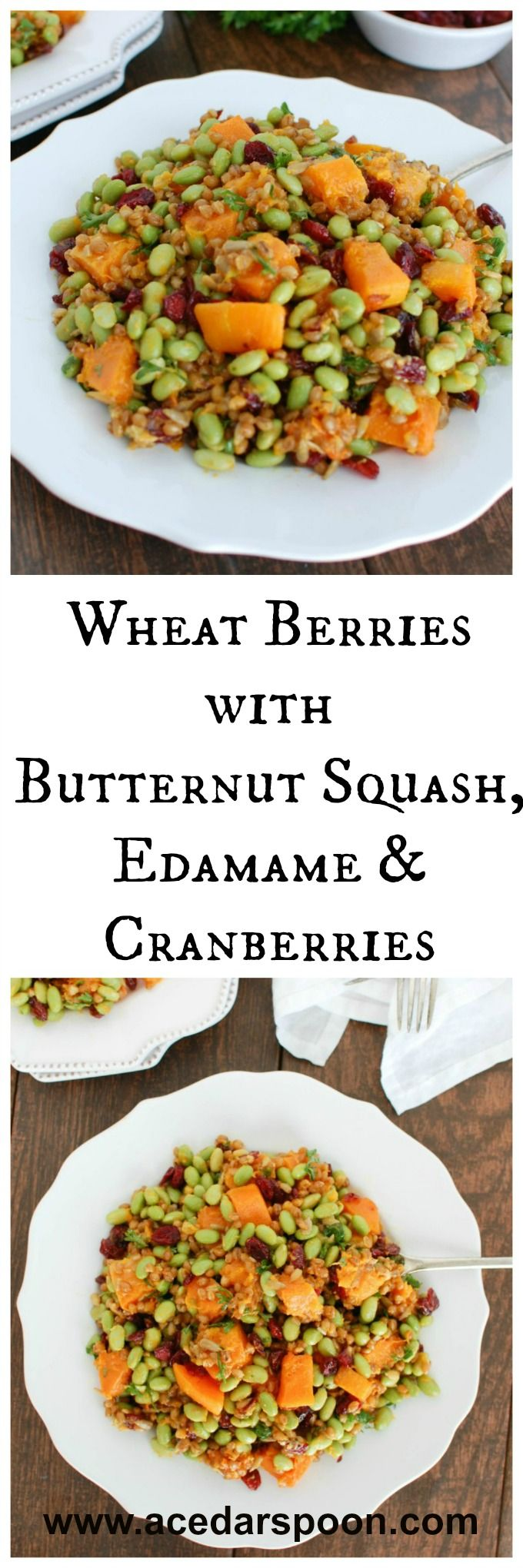 Wheat Berries with Butternut Squash, Edamame and Cranberries via @julia