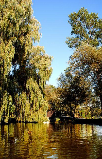 Lake Victoria, River Avon - Stratford, Ontario, Canada
