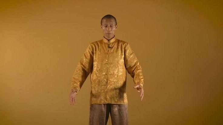 With Qi Gong Master Mingtong Gu