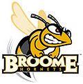 Broome Community College Hornets logo.jpg