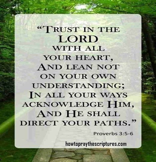 64652 best Pin your favorite quotes! images on Pinterest