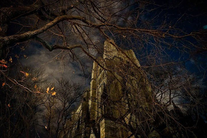 """Ghostly Divinity"": The Catherdral Church of St. John the Divine New York City Will I see you at FujiLove LIVE in NYC? I hope so When: Feb. 25-26 New York City http://ift.tt/2jypsM3  Elia Locardi Valerie Jardin and Damien Lovegrove hope to see you too. It's going to be a mighty unique experience happening at the amazing Bathhouse Studios. It'll be my first time there. I'm excited. :D  Be inspired!  ------------------------------------ #fujilove FujiLove FUJIFILM X Series US #fujifilmx_us"