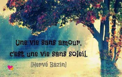 Citation d'Hervé Bazin sur le chagrin d'amour