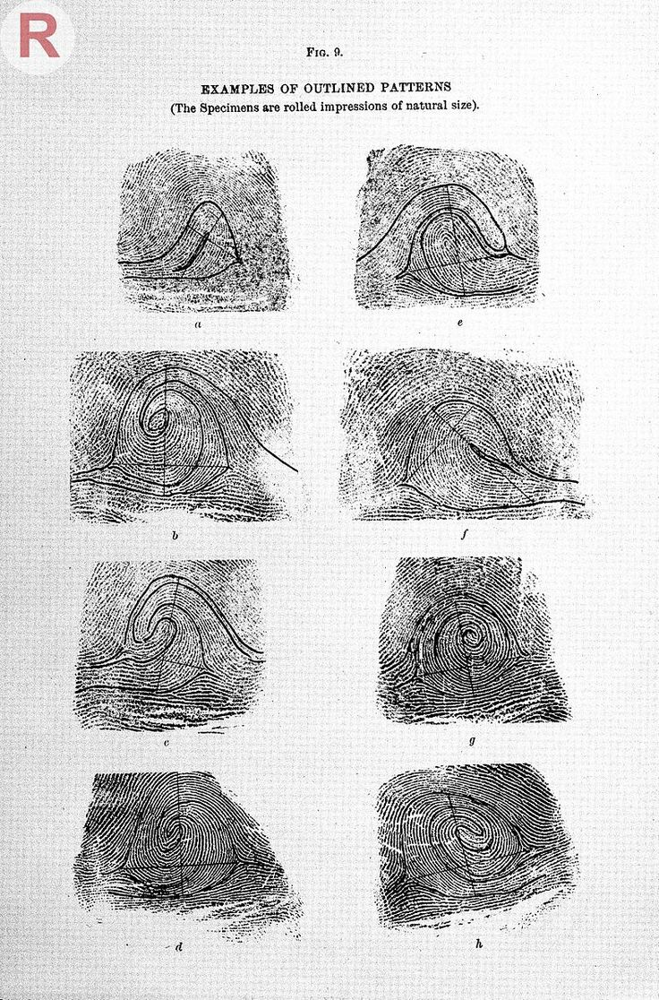 File:Francis Galton, Finger prints, 1892 Wellcome L0032699.jpg