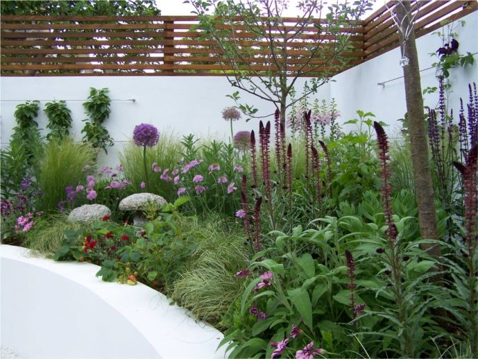 Sharon Hockenhull created this gorgeous hot plot for famous chef Antonio Carluccio. She tells F readers all about this stylish kitchen garden.