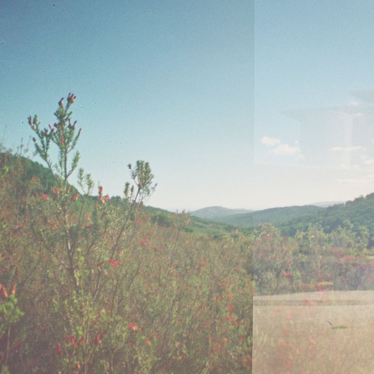 Lomography - Diana Mini - Landscape