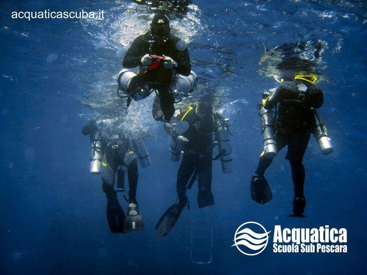 Acquatica Scuba ASD è un'associazione che persegue lo sviluppo e la pratica delle immersioni subacquee ricreative tramite il coinvolgimento associativo, l'organizzazione di viaggi e corsi di formazione subacquea. #Scuba #Diving #Mare