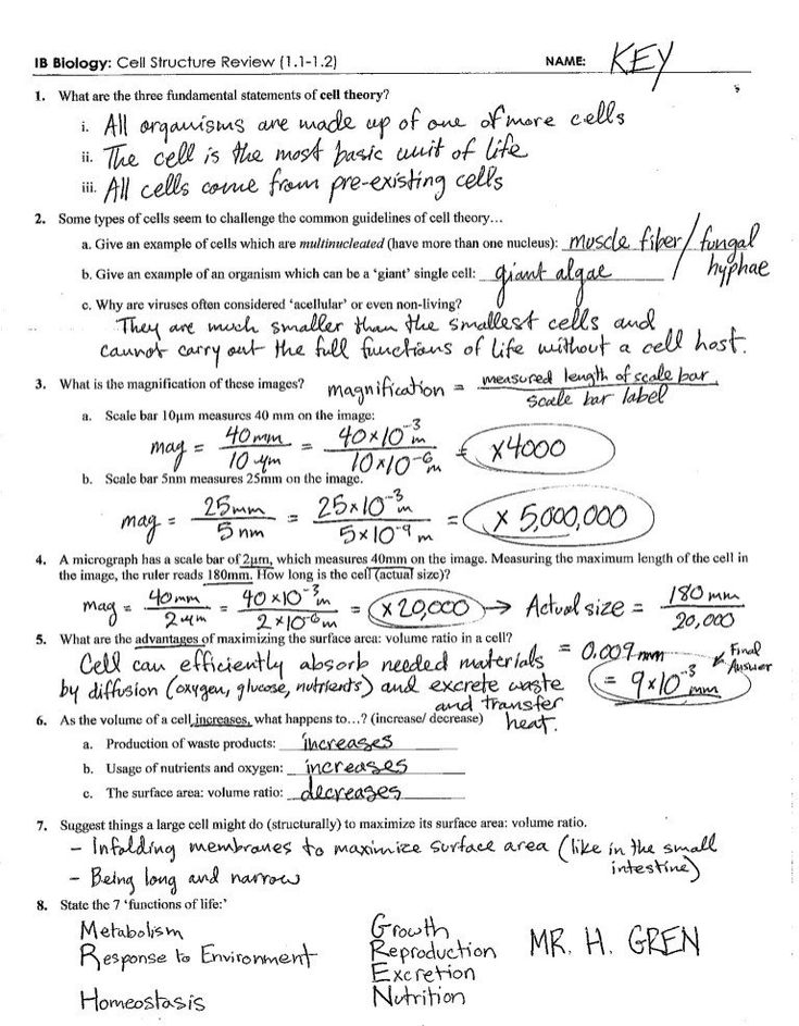 20 Cell Transport Worksheet Biology Answers in 2020 | Cell ...