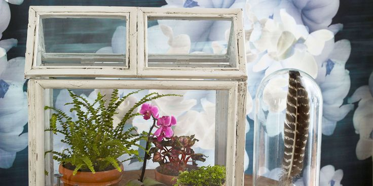 Recycle old wooden picture frames with this budget-friendly (and green!) craft. Picture frames into terrarium for succulents