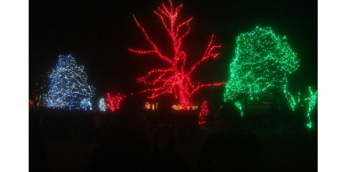 2nd still show from the 2012 toledo zoo display programmed by synchronized christmas