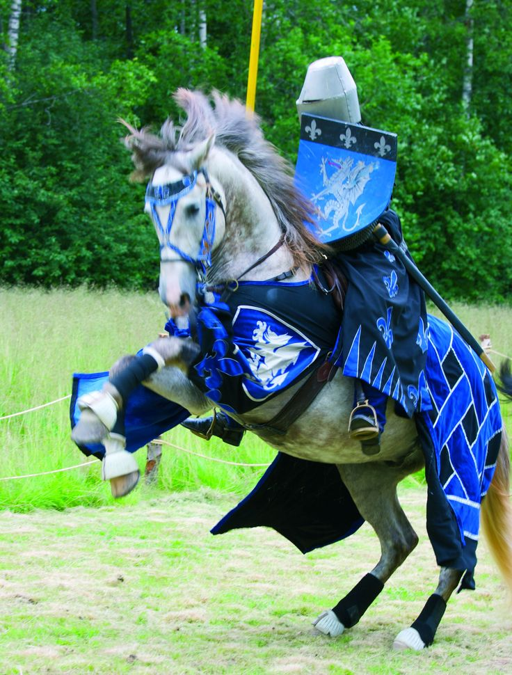 Medieval tournament at Raseborg Castle Ruins in Finland