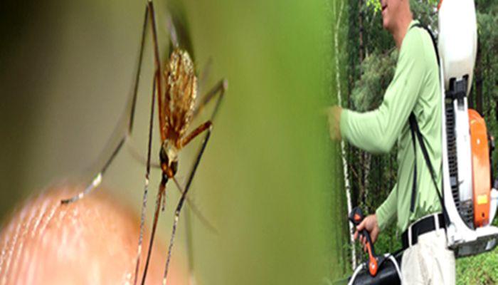 Call @ 9999787571. We offer Mosquito Control Services Delhi NCR India. Mosquito Control Delhi, Mosquito Control Noida, Mosquito Control Delhi.