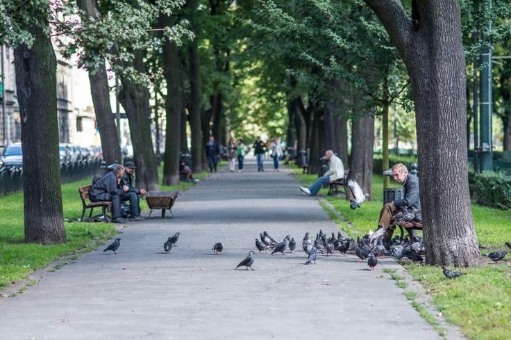 Planty Dietlowskie. Love Kraków