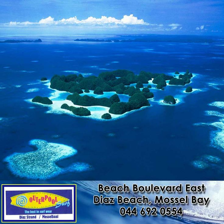 There about 20,000 to 30,000 islands in the Pacific. Most of these islands are host to unique flora and fauna, which makes them a paradise for any visitor. We have more intesting ocean facts:   http://besociable.link/4A #islands #oceanfact #pacificislands