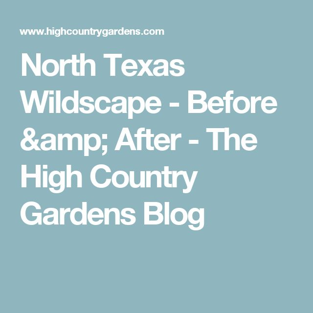 North Texas Wildscape - Before & After - The High Country Gardens Blog