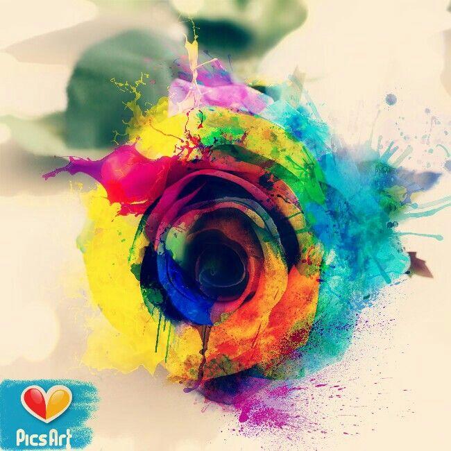 #splashcolor #rose