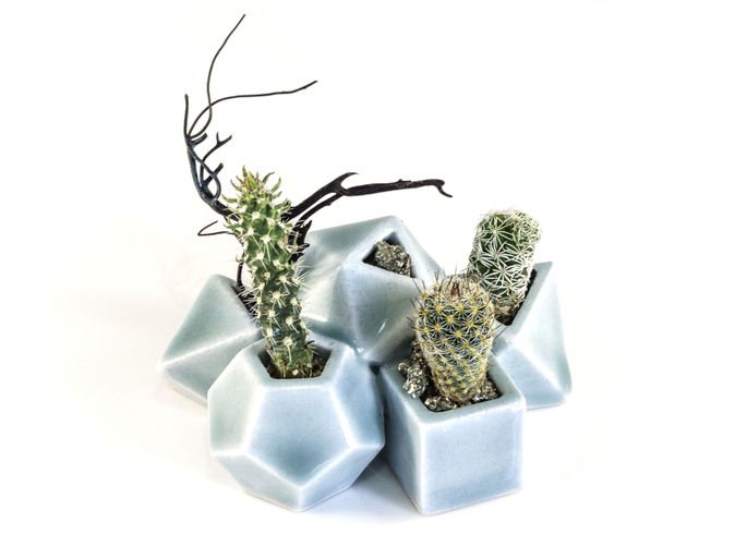 Check out Polyhedral Dice Planter by joabaldwin on Shapeways and discover more 3D printed products in Accessories.