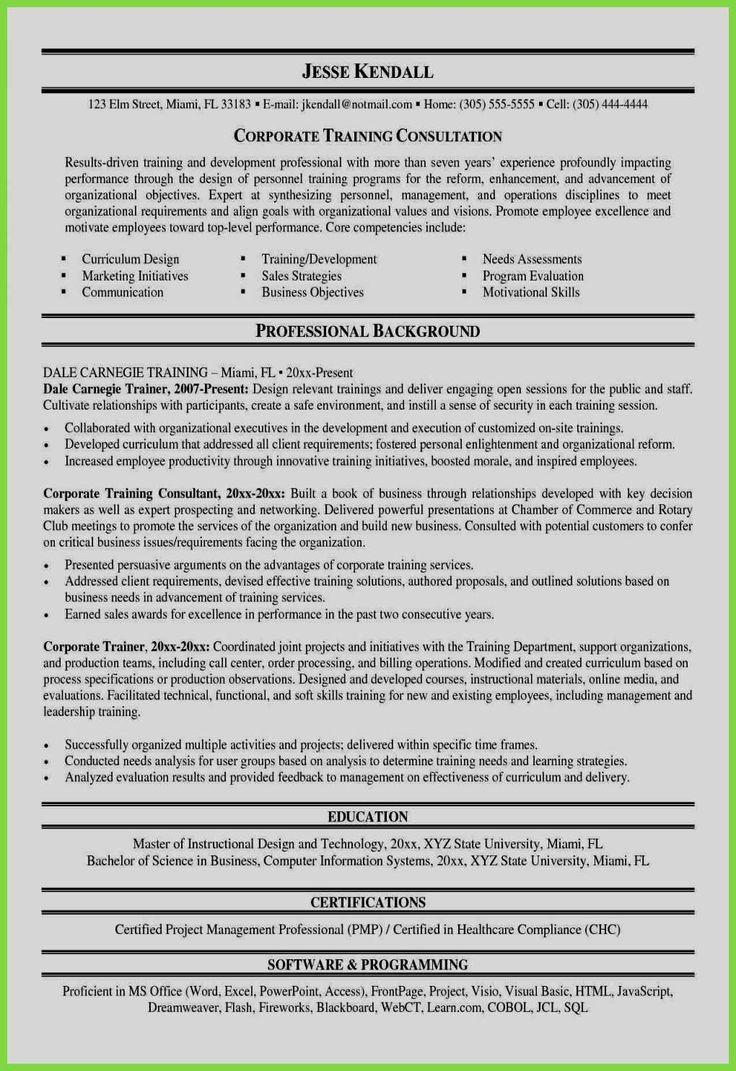 Chronofunctional Resume Beautiful Healthcare Cio Resume