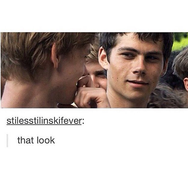 Newtmas is real<<--- all I can see is the kid behind Thomas. His eyes are just going 'I know. I ship them too.'