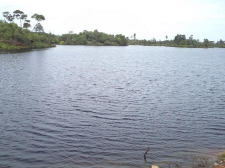 Danau Nibung Bengkulu