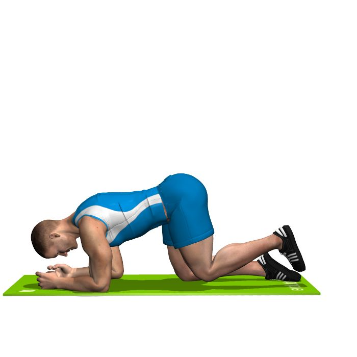GLUTE KICKBACK INVOLVED MUSCLES DURING THE TRAINING GLUTES