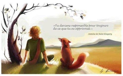 """""""tu deviens responsable pour toujours de ce que tu as apprivoisé. """"    (A. St-Exupéry)"""