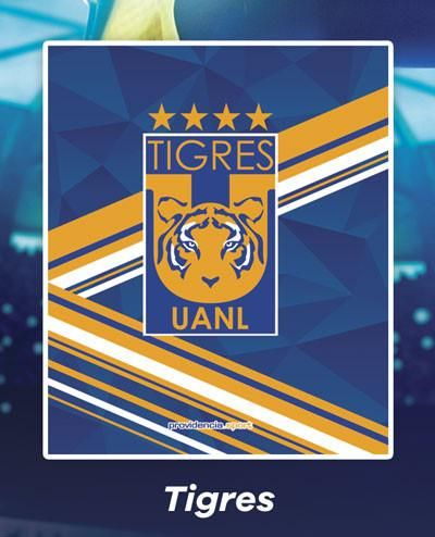 Cobertor Ligero Tigres Fútbol