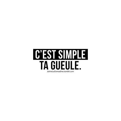 C'est simple ta gueule. - #JaimeLaGrenadine #LaPolitesse