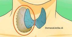 Vedeli ste, že každá bunka vo vašom tele obsahuje receptory na hormóny štítnej žľazy? Naučte sa, ako sami obnovíte jej správnu funkciu.