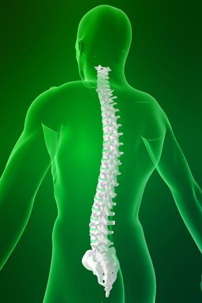 For more information visit:    http://www.brainspinesurgeryinindia.com Get a free of cost Medical opinion from renowned Spine / Neuro surgeons within 48 hours. Please scan and email your medical reports, MRI / CT Scans to us at  info@brainspinesurgeryinindia.com Call us: +91-9811058159 Mail us:  info@brainspinesurgeryinindia.com  Follow us: Facebook- https://www.facebook.com/brainspinesurgeryinindia Twitter - https://twitter.com/Brainspine24  Pinterest…