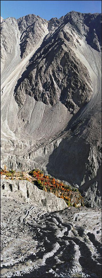 Orchard in Bagrote Valley, Pakistan. Bagrote Valley is in the Karakoram Mountain range in Gilgit–Baltistan. (V)
