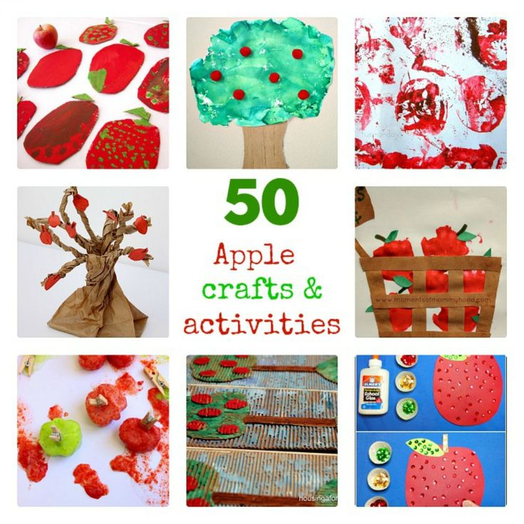 preschool apple crafts 1000 images about seasonal september apples farm 2738