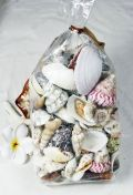 Give your guests bomboniere/favour remember with this gorgeous starfish topped decorated wooden trinket Rope detail small shells also feature area some treats this will sure please high inside area fill with treats approx