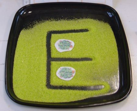 I like the dark tray for letter, shape & number practice. It provinces better contrast with a variety of media.