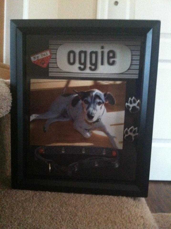 A memorial shadow box I made for my parents dog when he passed away.