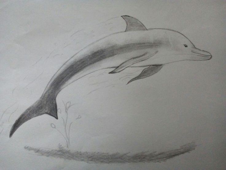 17 best ideas about dauphin dessin on pinterest dessin - Dessins de dauphins ...
