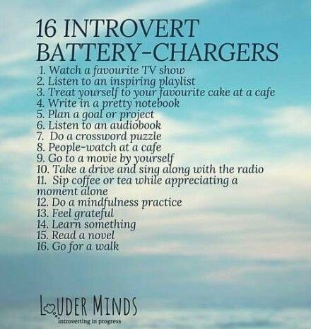 16 Introvert Battery-Chargers.