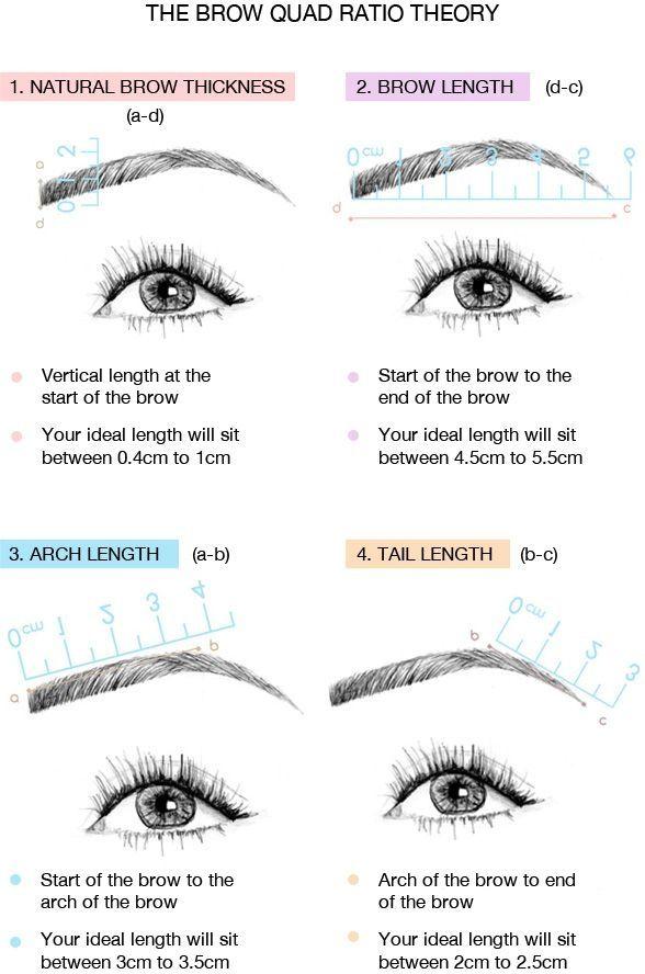 Augenbrauen - die ideale Länge, die ideale Dicke und der ideale Bogen ... etwas natürlich darf's dann doch sein ...