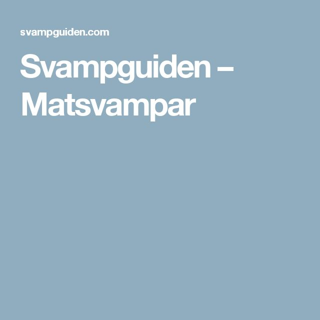 Svampguiden – Matsvampar