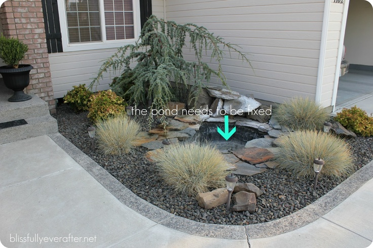 Front Yard Pond Ideas