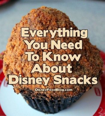 Disney Food Tips: Everything You Need to Know About Disney Snacks! #DisneyFood
